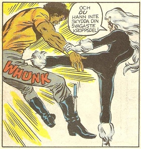 Only in Swedish comics is the heroin ever a gray-haired lady in full S&M garb and boots with the fur.  Oh Flo Rida, youre a national treasure!  (NadShot.com)